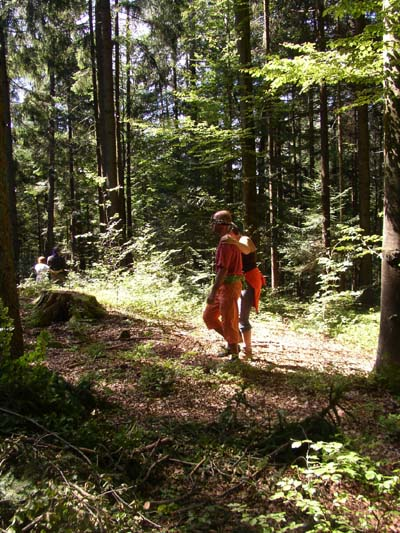 Blind Führen im Wald